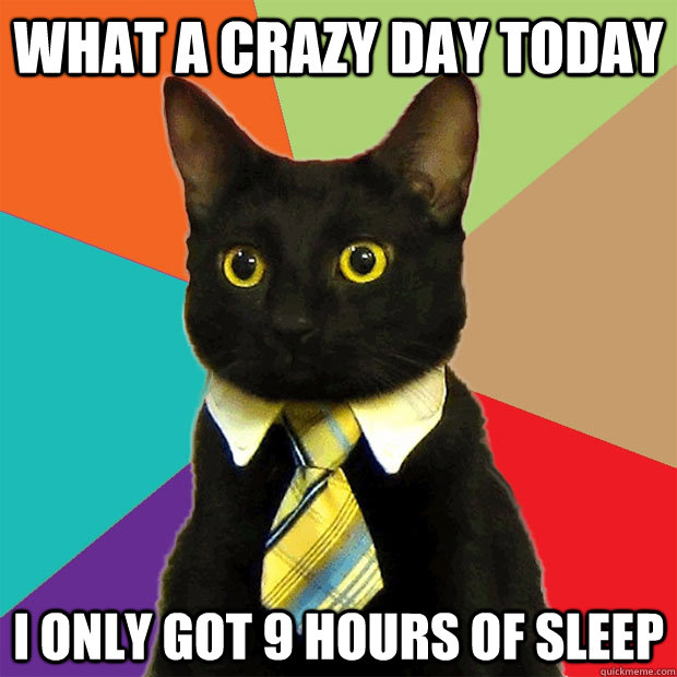 what a crazy day today i only got 9 hours of sleep - Business Cat