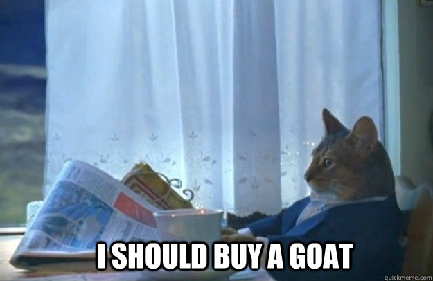 i should buy a goat - Sophisticated Cat