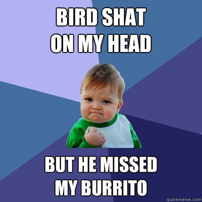 bird shat on my head but he missed my burrito - Success Kid