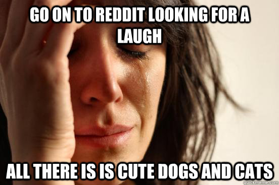 go on to reddit looking for a laugh all there is is cute dog - First World Problems