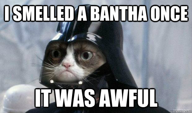 i smelled a bantha once it was awful - Grumpy Vader