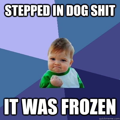 stepped in dog shit it was frozen - Success Kid