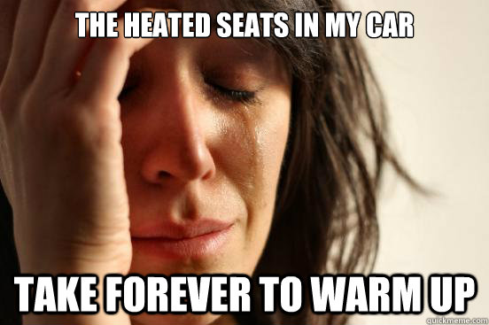 the heated seats in my car take forever to warm up - First World Problems