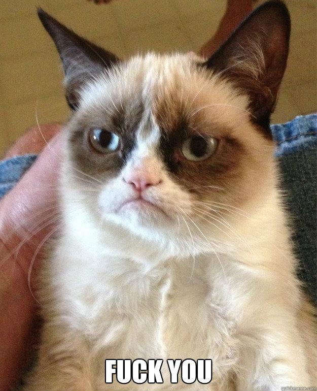 fuck you - Grumpy Cat