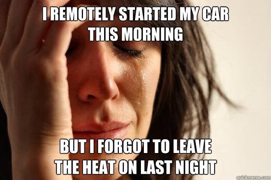 i remotely started my car this morning but i forgot to leav - First World Problems