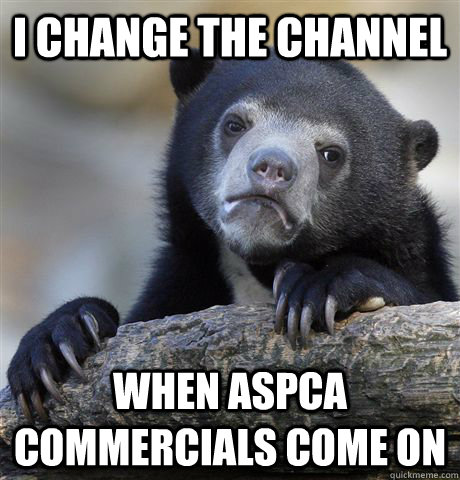 i change the channel when aspca commercials come on - Confession Bear