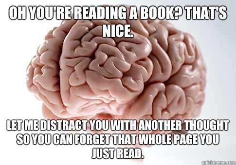 Oh youre reading a book Thats nice Let me distract you with  - Scumbag Brain