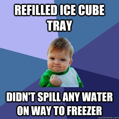 refilled ice cube tray didnt spill any water on way to free - Success Kid