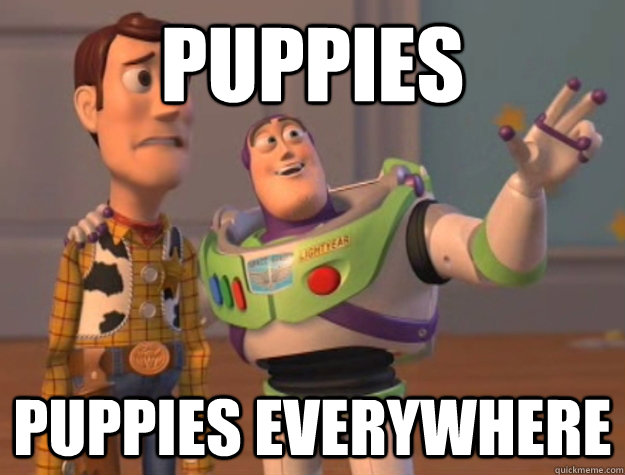 puppies puppies everywhere - Buzz Lightyear