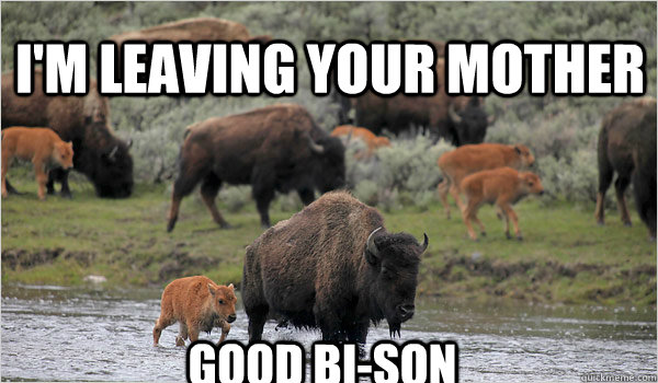 im leaving your mother good bison - 