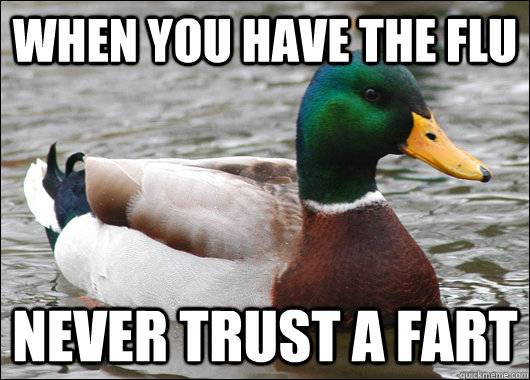 when you have the flu never trust a fart - Actual Advice Mallard