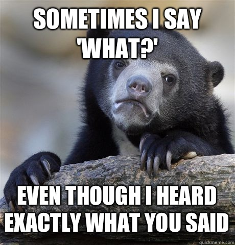 SOMETIMES I SAY WHAT EVEN THOUGH I HEARD EXACTLY WHAT YOU SA - Confession Bear