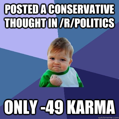 posted a conservative thought in rpolitics only 49 karma - Success Kid