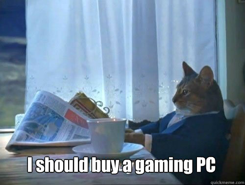 i should buy a gaming pc - Fancy Cat