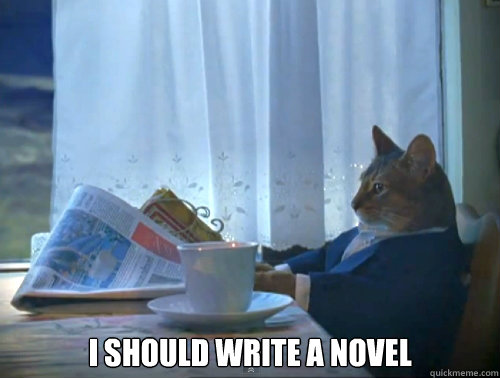 i should write a novel - The One Percent Cat