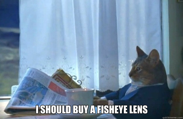 i should buy a fisheye lens - Sophisticated Cat