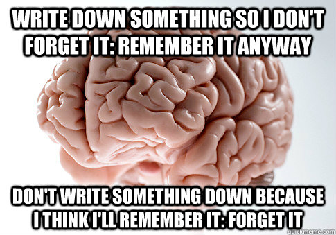 write down something so i dont forget it remember it anywa - Scumbag Brain