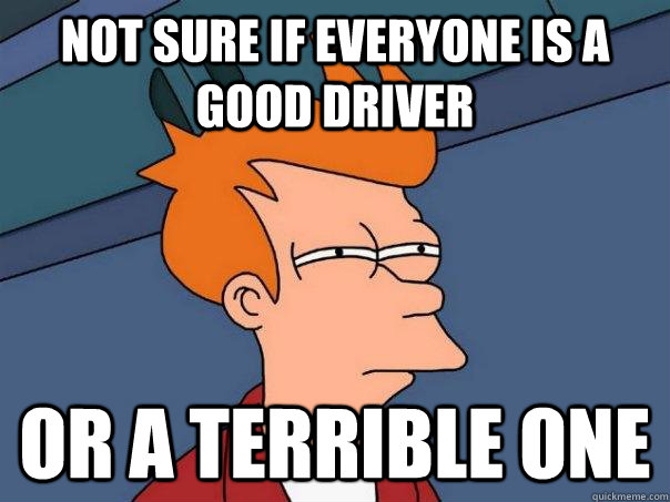not sure if everyone is a good driver or a terrible one - Futurama Fry