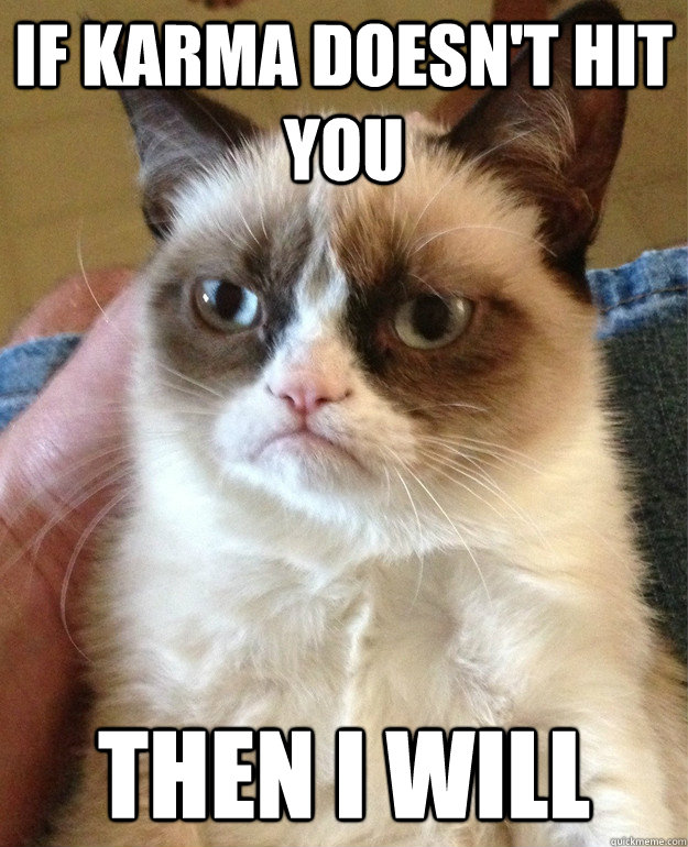 if karma doesnt hit you then i will - Grumpy Cat