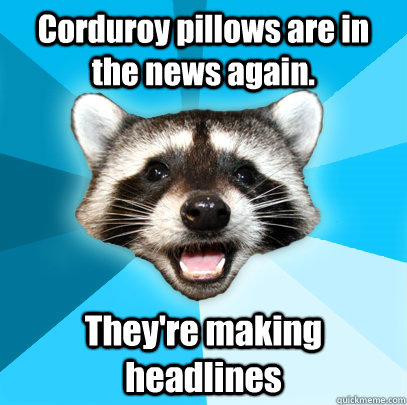 corduroy pillows are in the news again theyre making headl - Lame Pun Coon