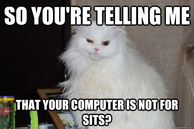 so youre telling me that your computer is not for sits -