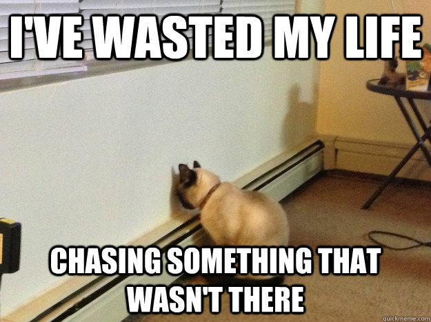 ive wasted my life chasing something that wasnt there - Regretful Cat