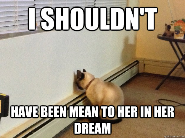 i shouldnt have been mean to her in her dream - Regretful Cat