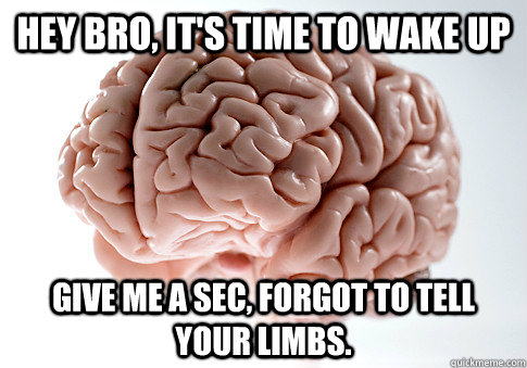 hey bro its time to wake up give me a sec forgot to tell  - Scumbag Brain