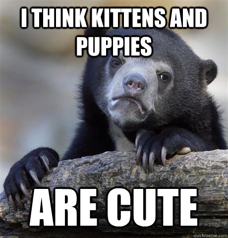 i think kittens and puppies are cute - Confession Bear