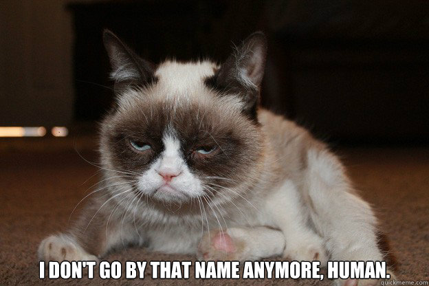 i dont go by that name anymore human - grumpy cat monday