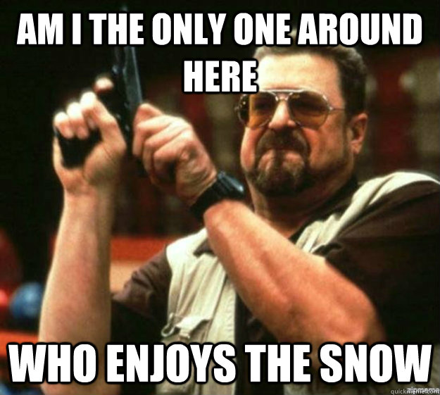 am i the only one around here who enjoys the snow - Am I the only one around here...