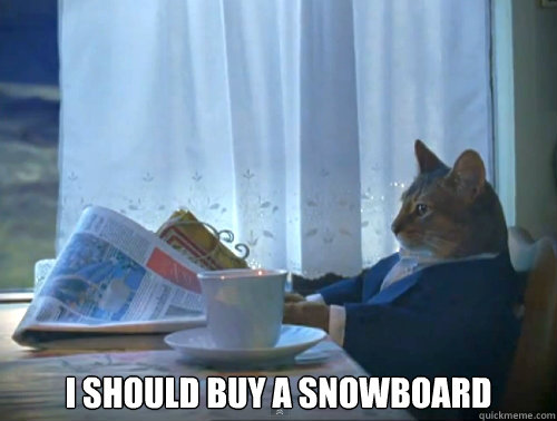 i should buy a snowboard - The One Percent Cat