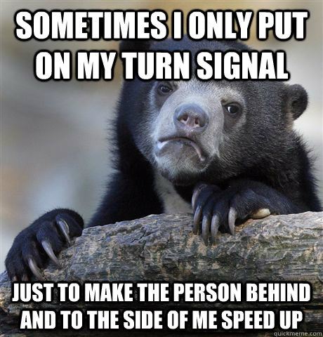 sometimes i only put on my turn signal just to make the pers - Confession Bear