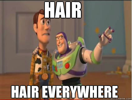 hair hair everywhere - woody and buzz