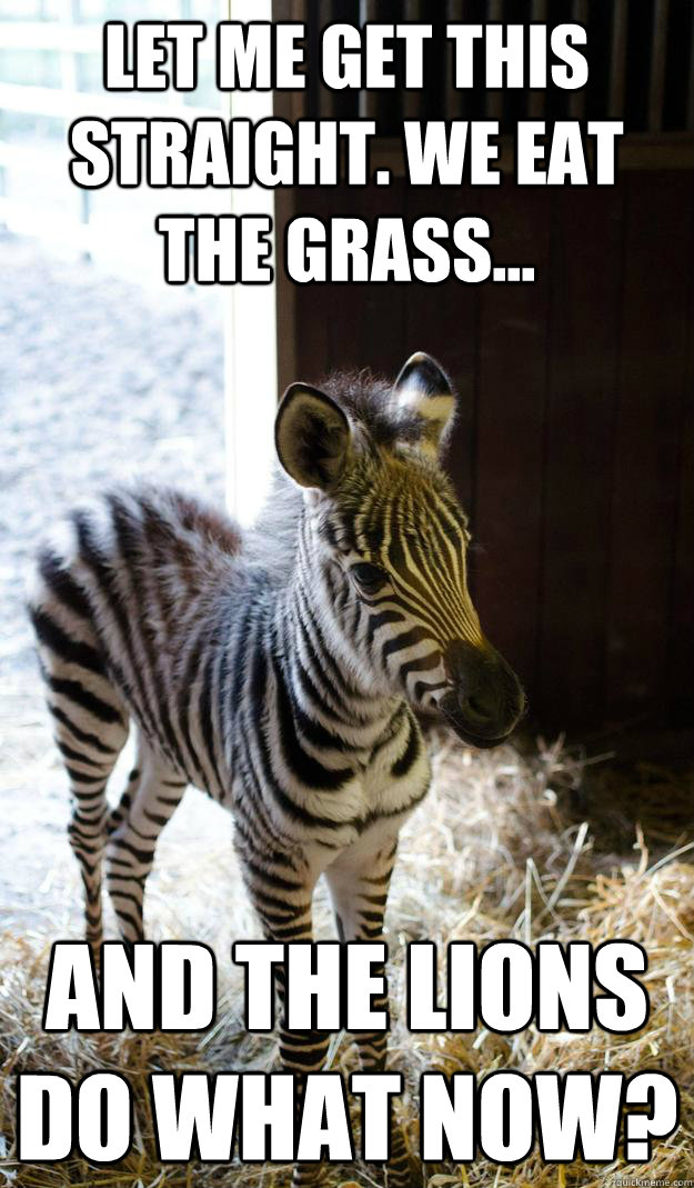 let me get this straight we eat the grass and the lions  - Lesson Zebra