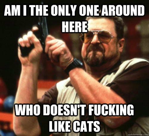 am i the only one around here who doesnt fucking like cats - Am I The Only One Around Here