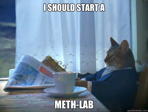 i should start a methlab - The One Percent Cat