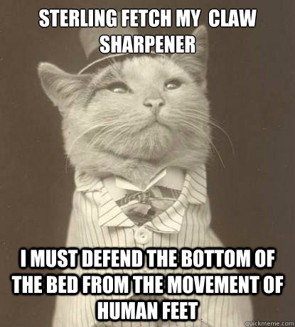 sterling fetch my claw sharpener i must defend the bottom o - Aristocat