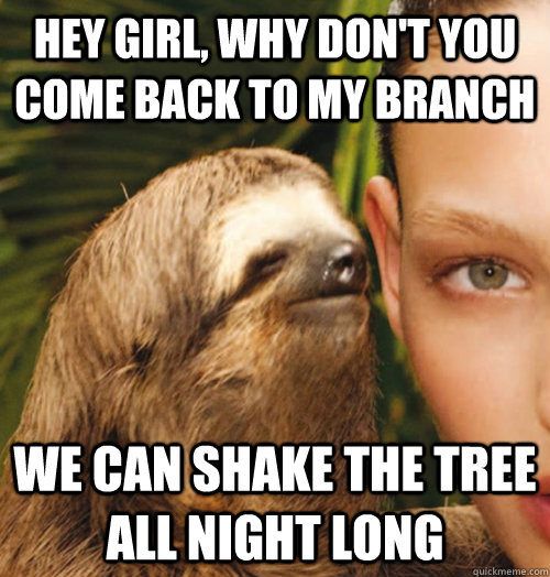 The gallery for --> Whispering Sloth Meme Blank
