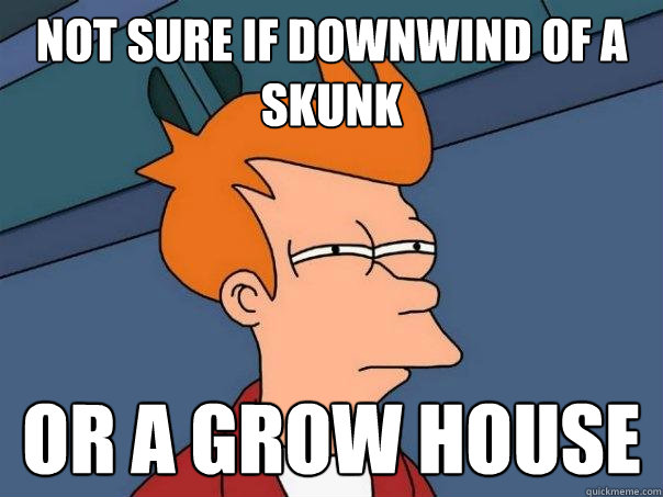 not sure if downwind of a skunk or a grow house - Futurama Fry