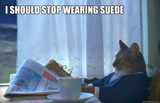 i should stop wearing suede - Sophisticated Cat