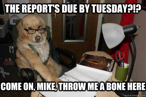 the reports due by tuesday come on mike throw me a bon -