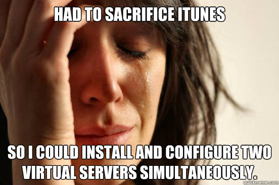 had to sacrifice itunes so i could install and configure two - First World Problems