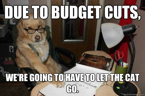 due to budget cuts were going to have to let the cat go -