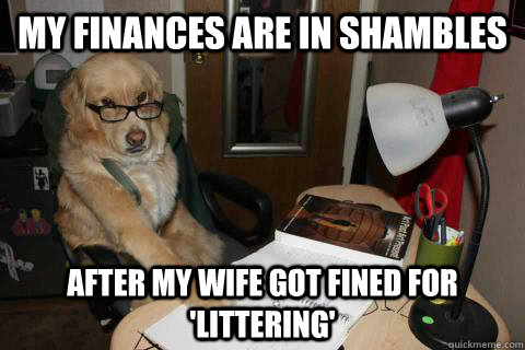 my finances are in shambles after my wife got fined for lit -