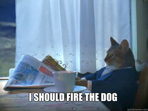 i should fire the dog - The One Percent Cat