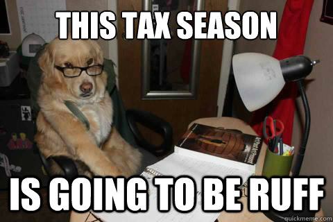 this tax season is going to be ruff - Financial Advice Dog