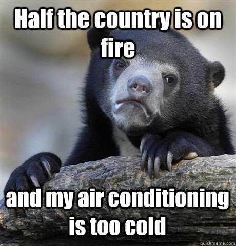 half the country is on fire and my air conditioning is too c - Confession Bear