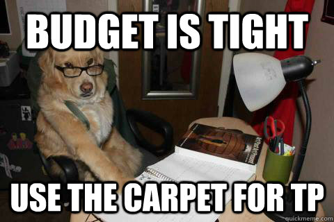 budget is tight use the carpet for tp - Financial Advice Dog
