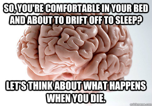 so youre comfortable in your bed and about to drift off to - Scumbag Brain